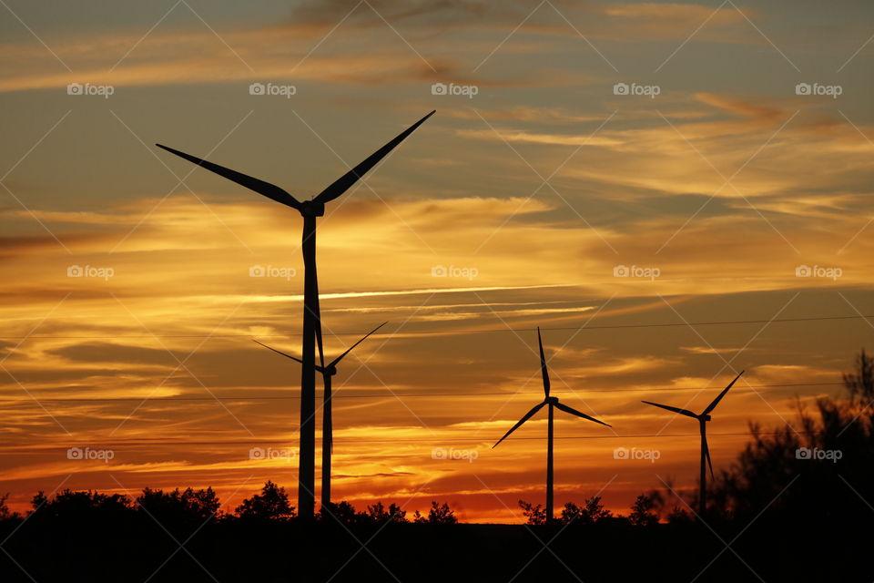 Windmills at sunset. Bay of Puck. Poland