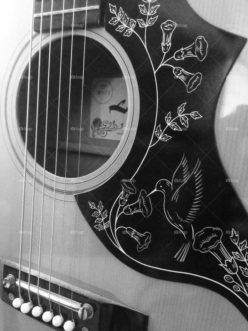 Guitar close up in black and white