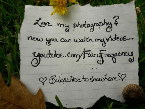 Youtube.com/FairyFrequency