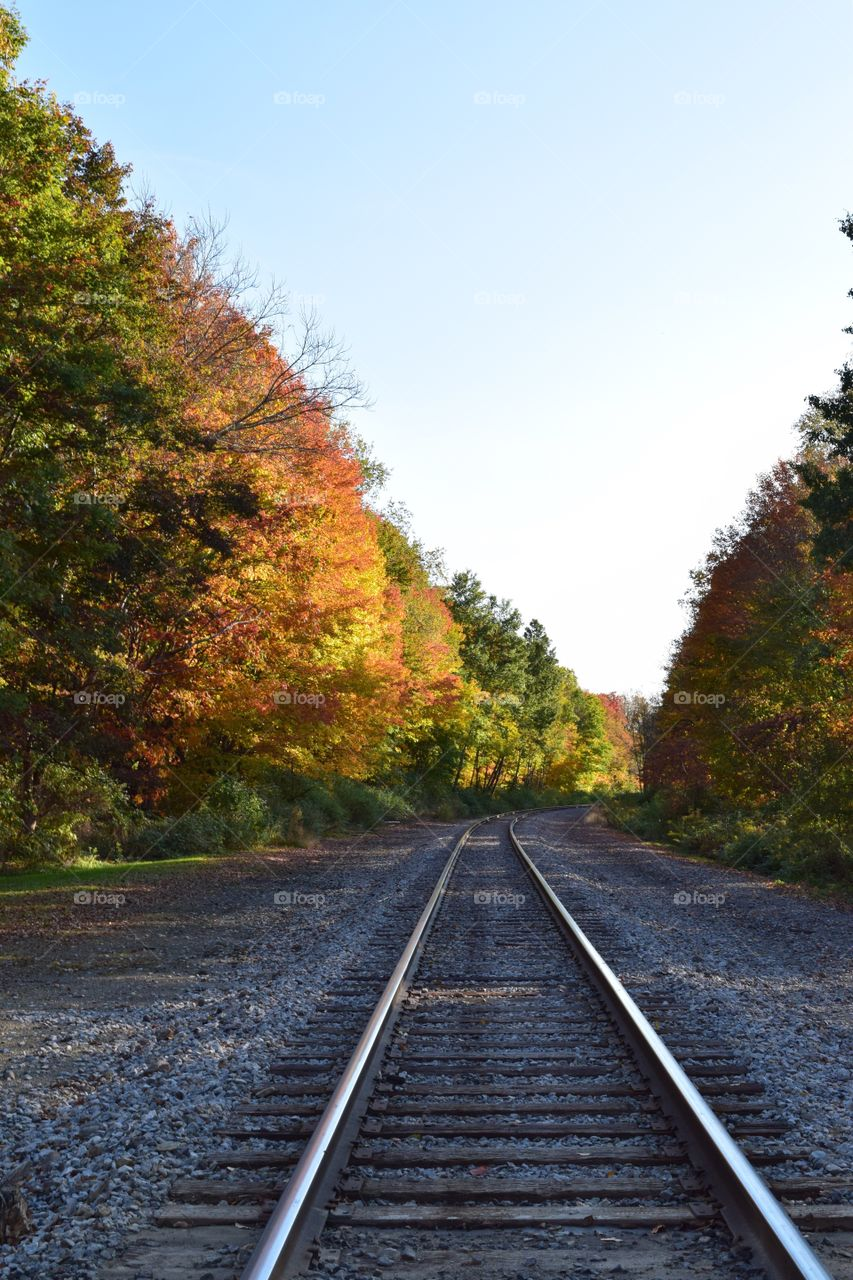 A look at the train tracks from my point of view in early Autumn.