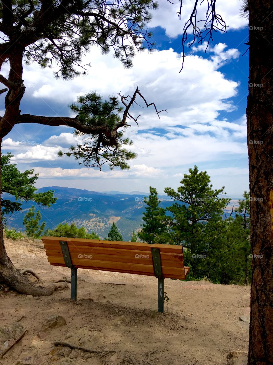 Empty bench on mountain