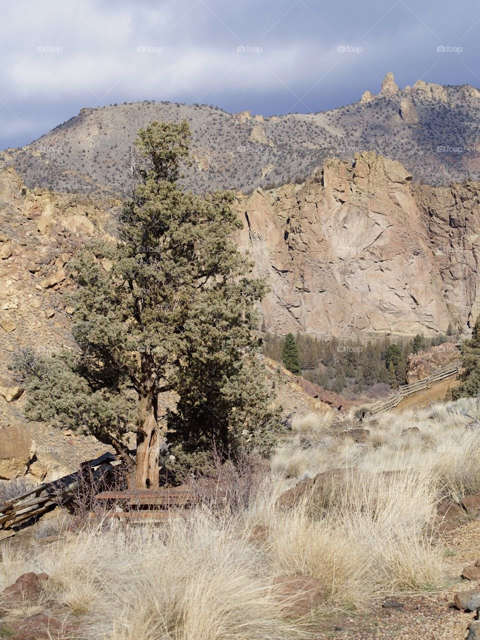 The jagged geology of Smith Rock State Park in Central Oregon with wild grasses and juniper trees in the foreground and stormy skies overhead on a winter day.