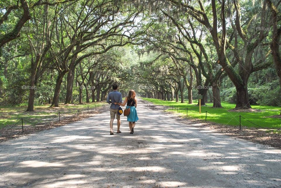 Love in savannah
