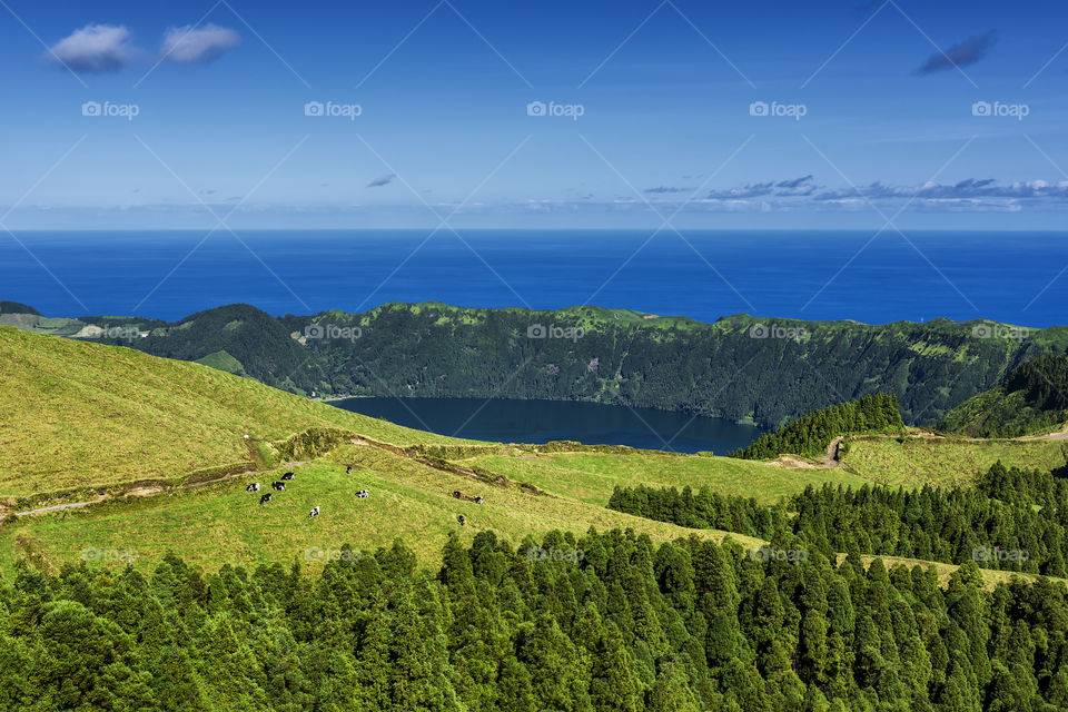 View from the road to Sete Cidades in the island of Sao Miguel, Azores, Portugal. Meadows and vulcanic lake with ocean in the background