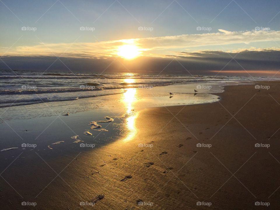 Sunlight glowing on beach