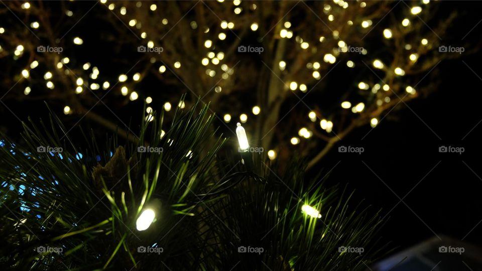 Night festive decoration,  tiny LED lights