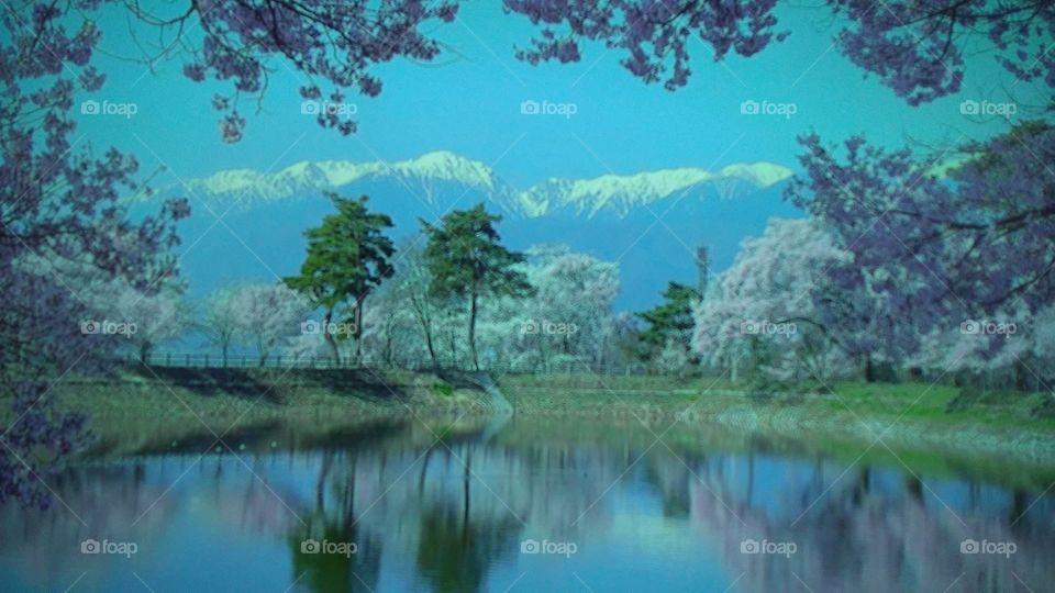 Water, Landscape, Lake, Tree, Reflection