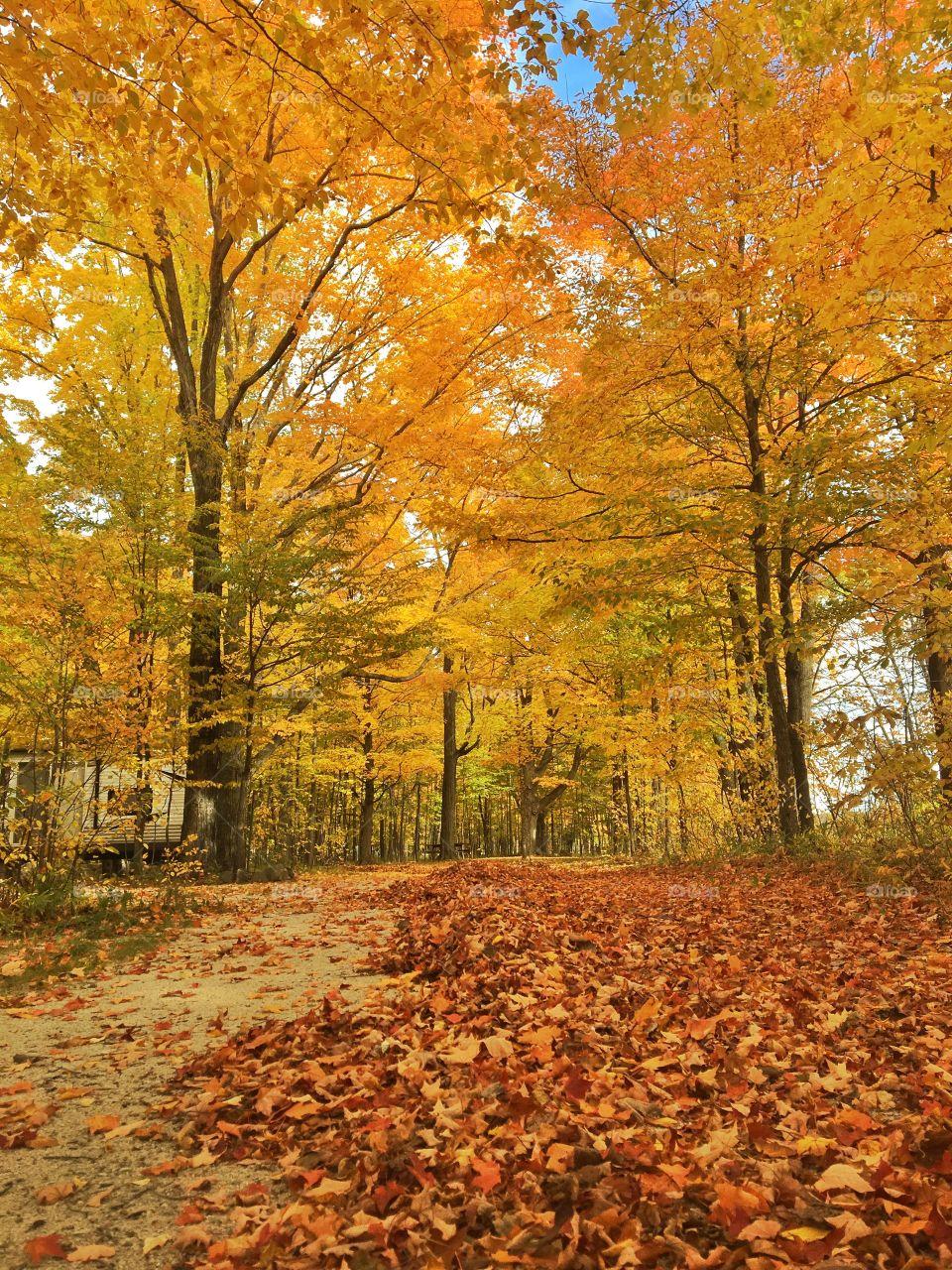 Enjoying the beautiful fall colors