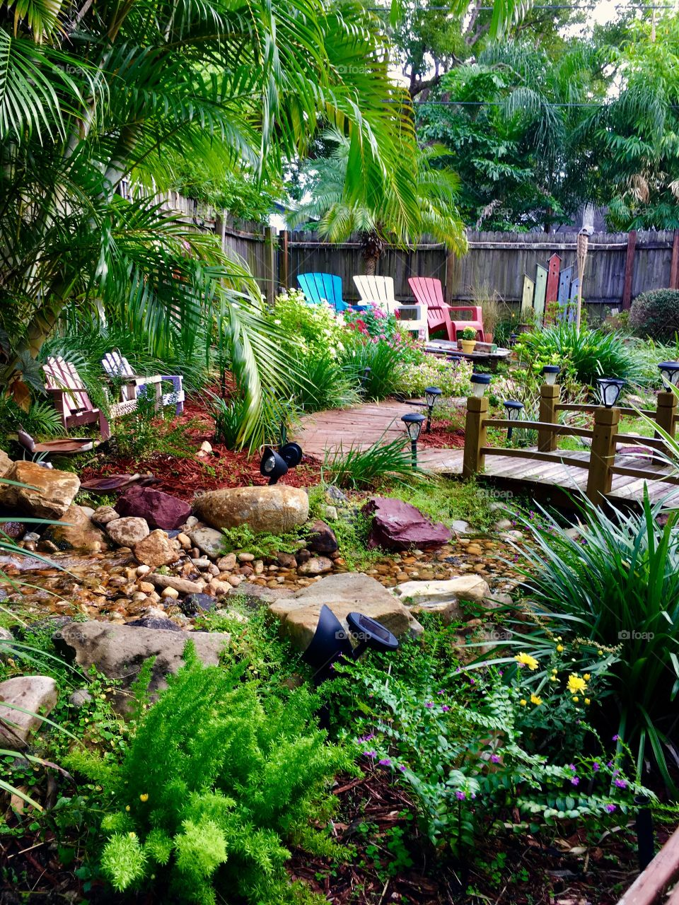 My backyard retreat. Where I come to feel enormous peace and the beauty of God's creativity.