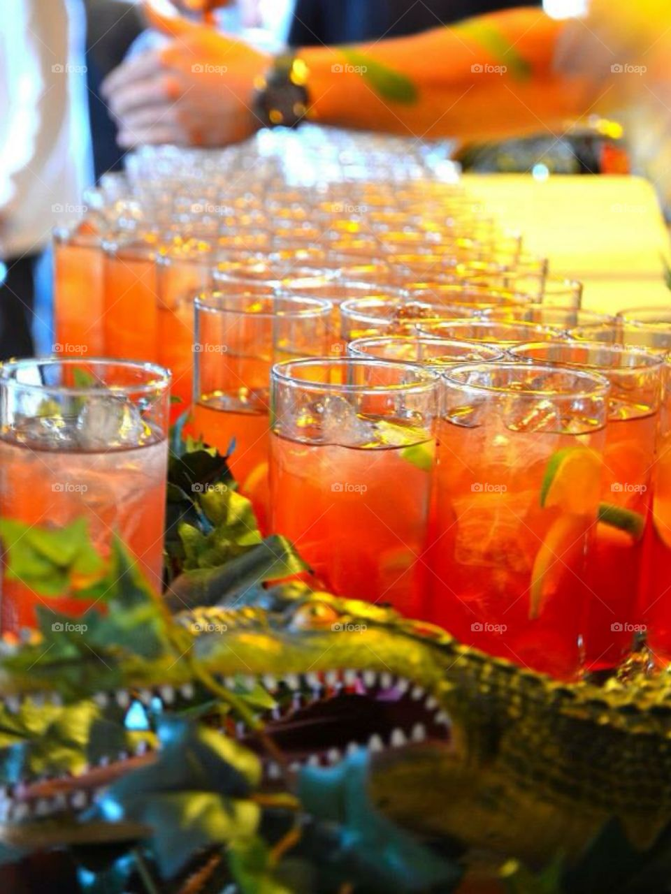 Drinks in the jungle