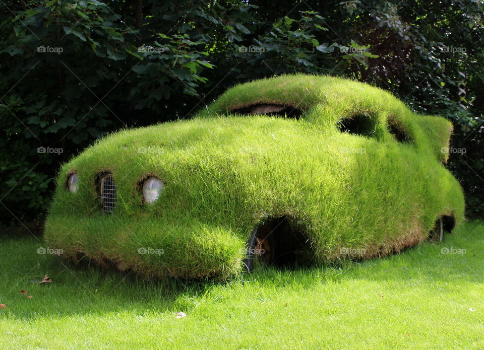Close-up of car with grass