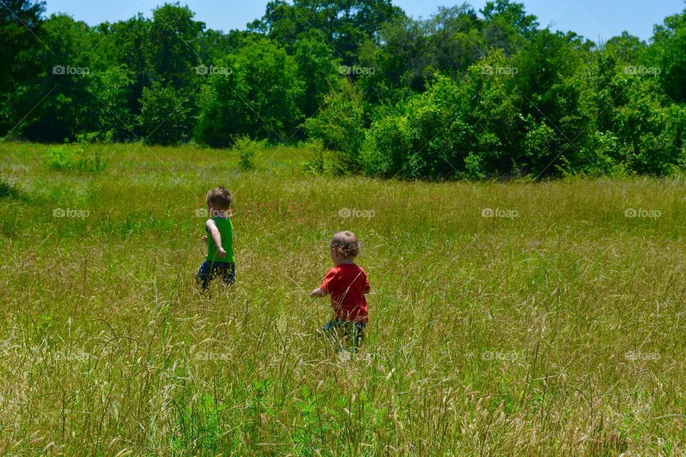 Boys playing in a cow field in the country