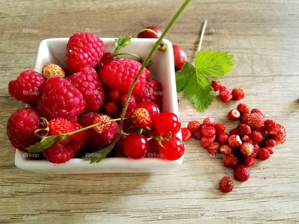Beautiful fresh cut from bushes berries