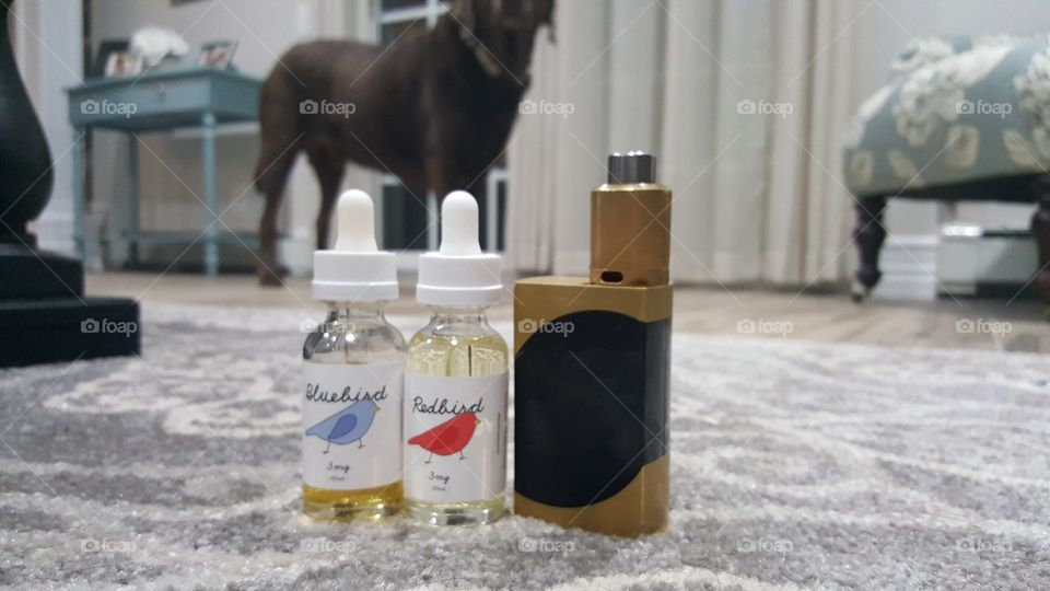 Dogs and Vape.