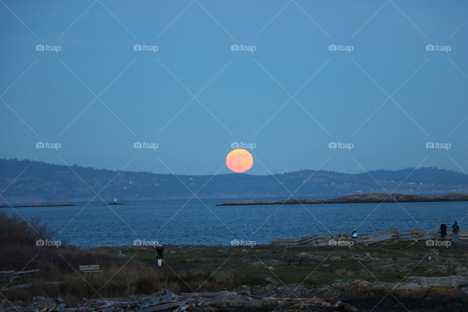 A big orange rolling on top of the hill ? That's a winter full  moon , super moon rising over the horizon spreading joy in the eyes of the spectators