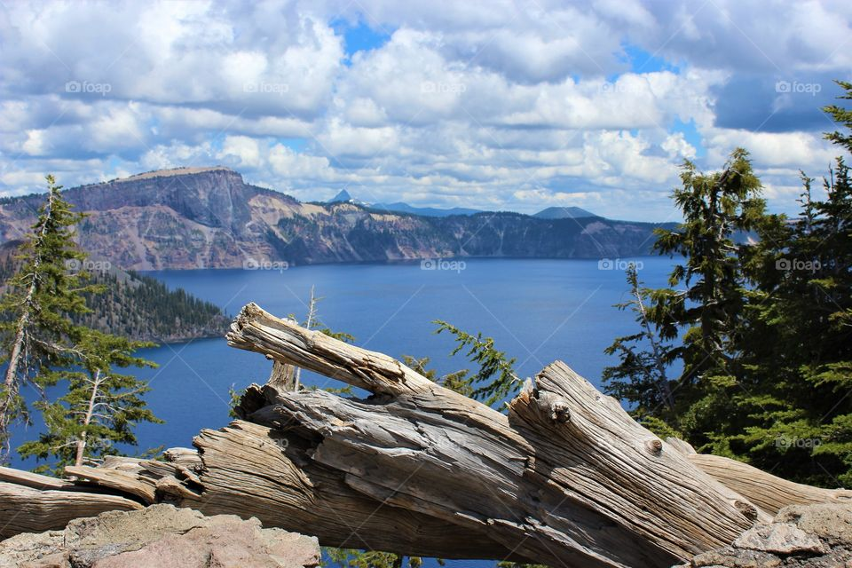Crater Lake National park, Oregon USA; cloudy, dead tree in foreground, still water