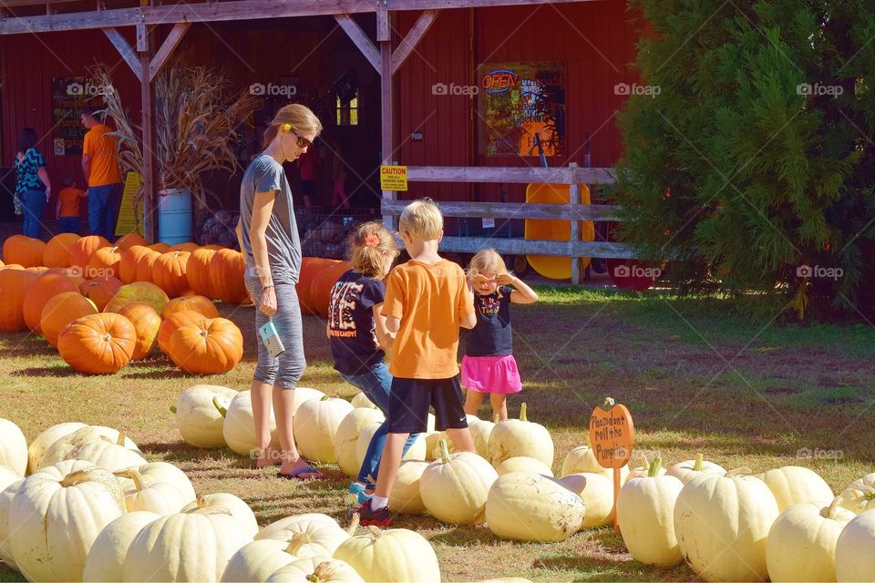 Family picking out a Pumpkin
