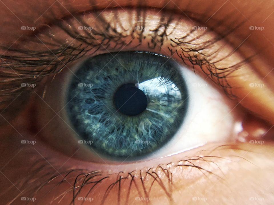 Detail of human eye