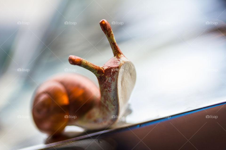 Close-up of artificial snail