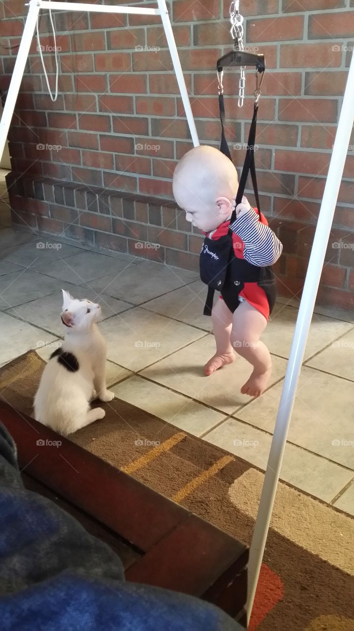 Love at first sight. Moo & my son staring deeply into each others eye's.