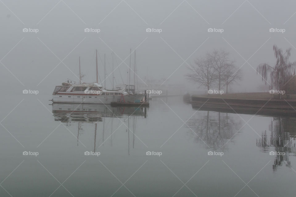 Boats, trees and horizon disappearing into the fog