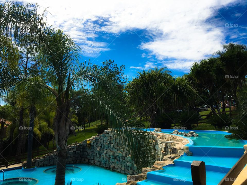 Palm trees at cascading pool