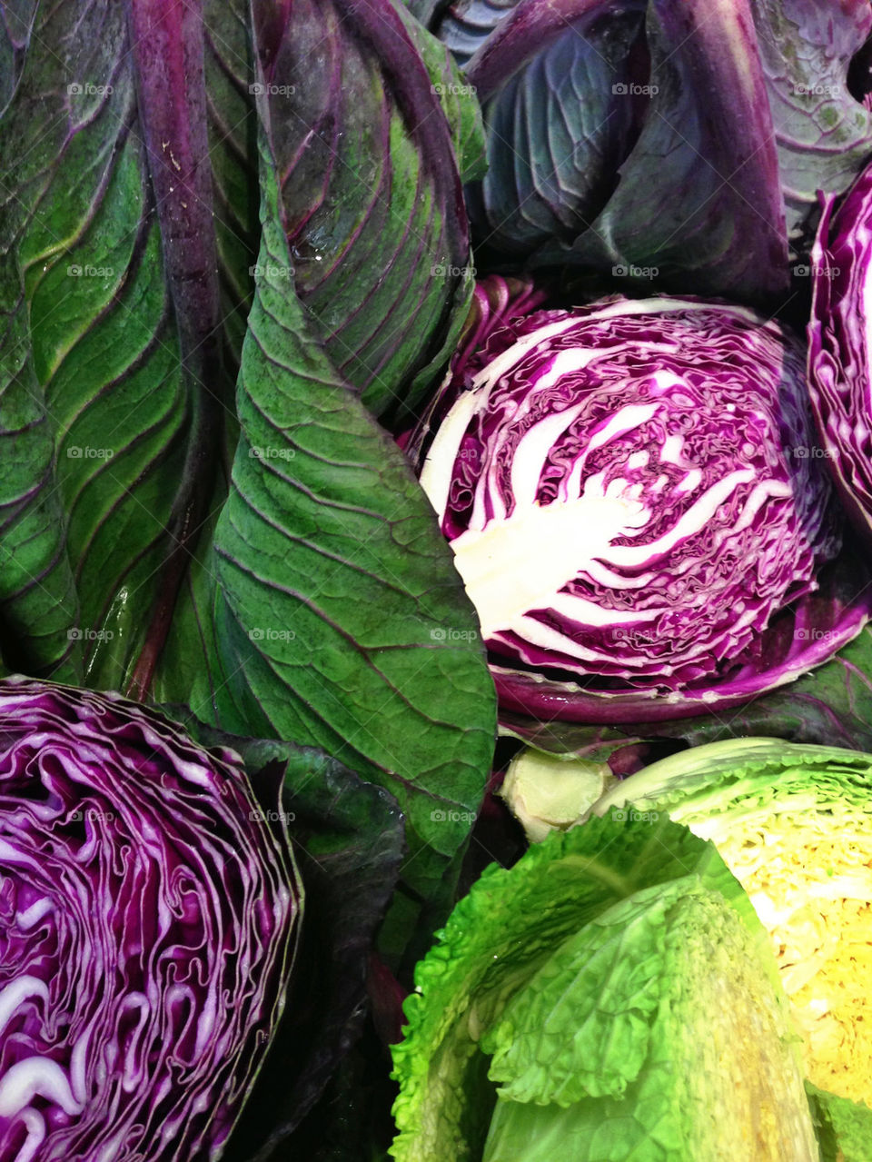 Colorful cabbages