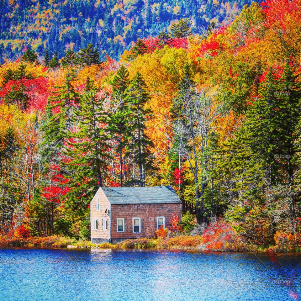 autumn at the cabin on the lake