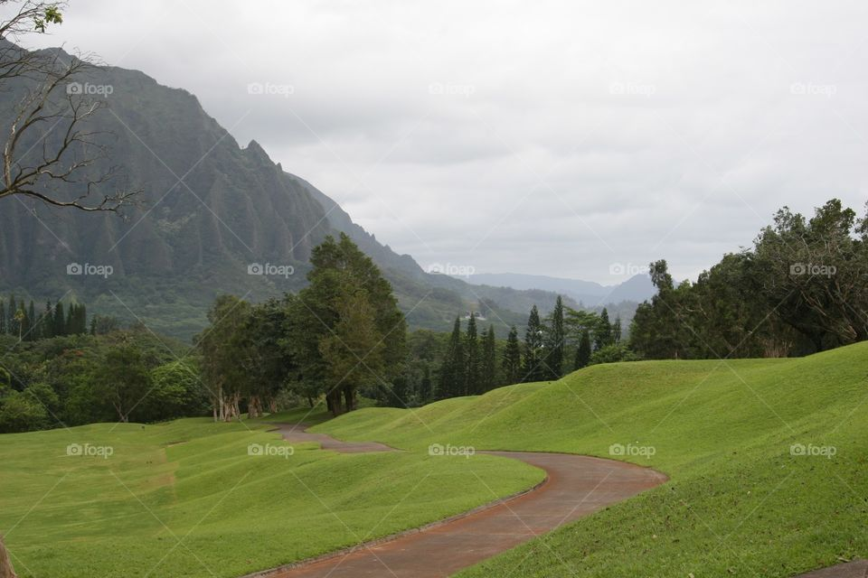 Path to the Mountains. A path on a golf course in Hawaii.
