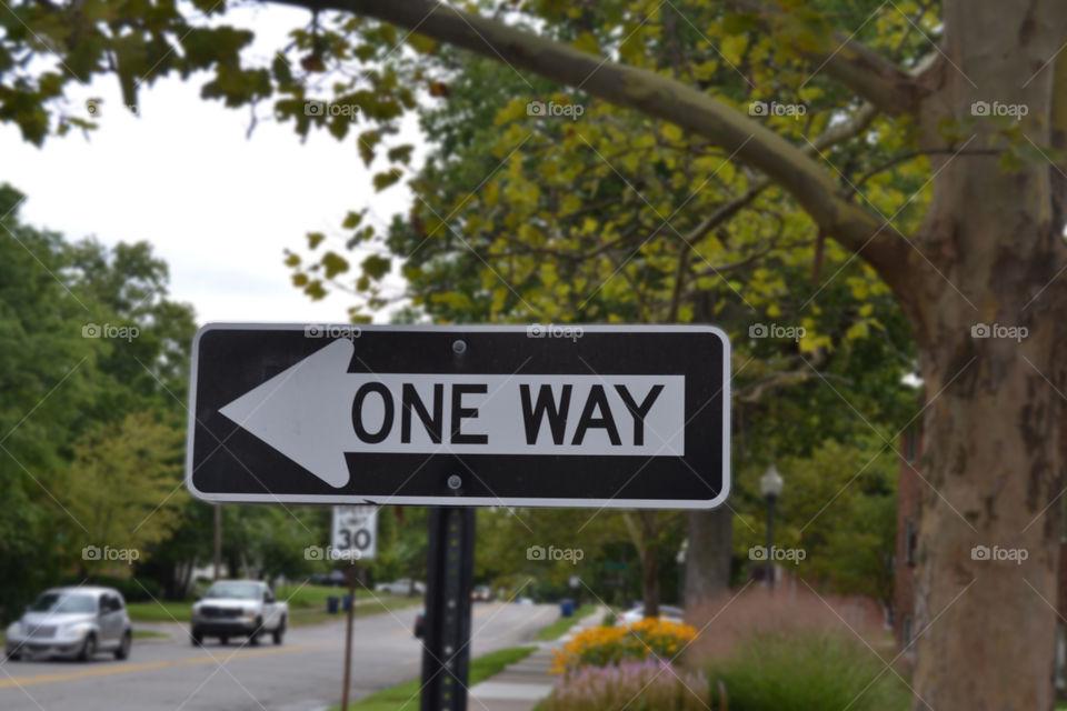 One Way. Pauline Blvd near Stadium Blvd. Ann Arbor, Michigan