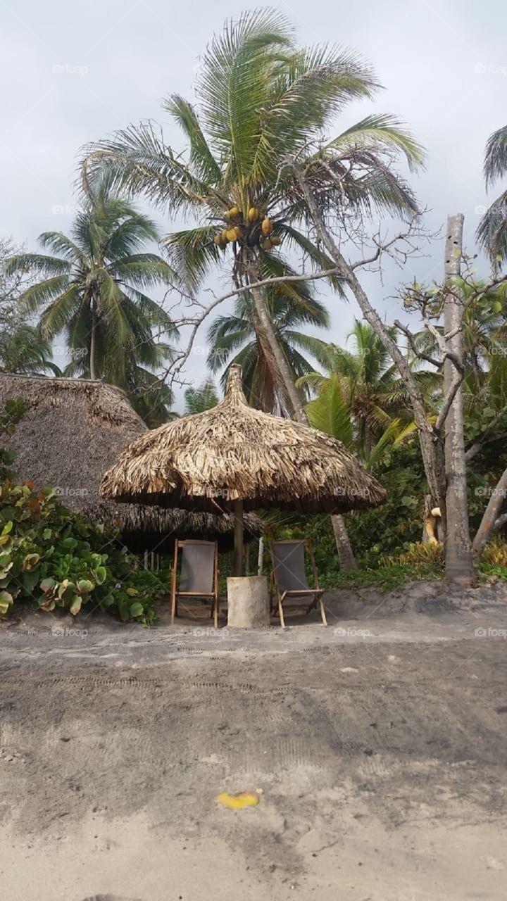 Guajira hermosa