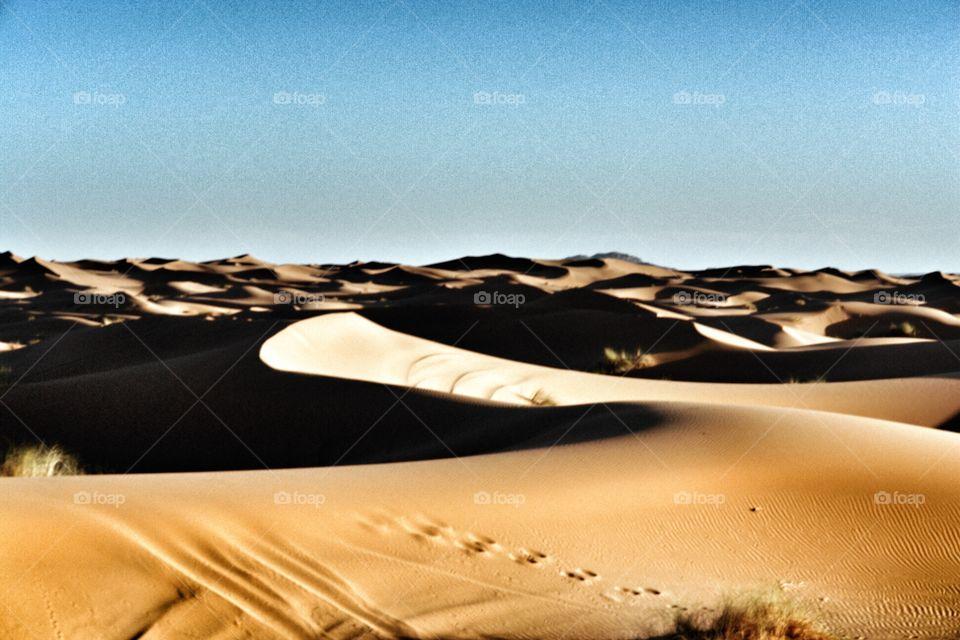 Sahara Desert Sand Dune . Sahara Desert Sand Dune