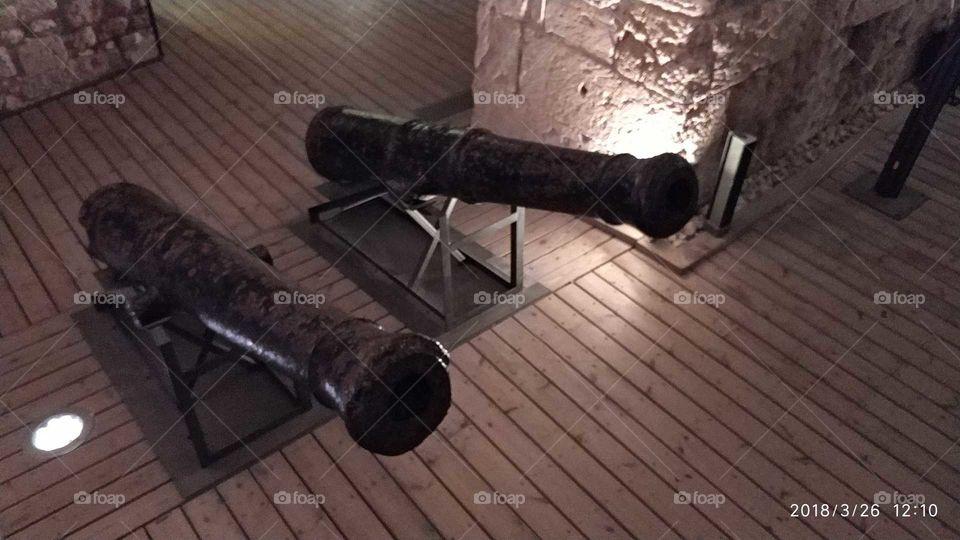 Guns of Napoleon
