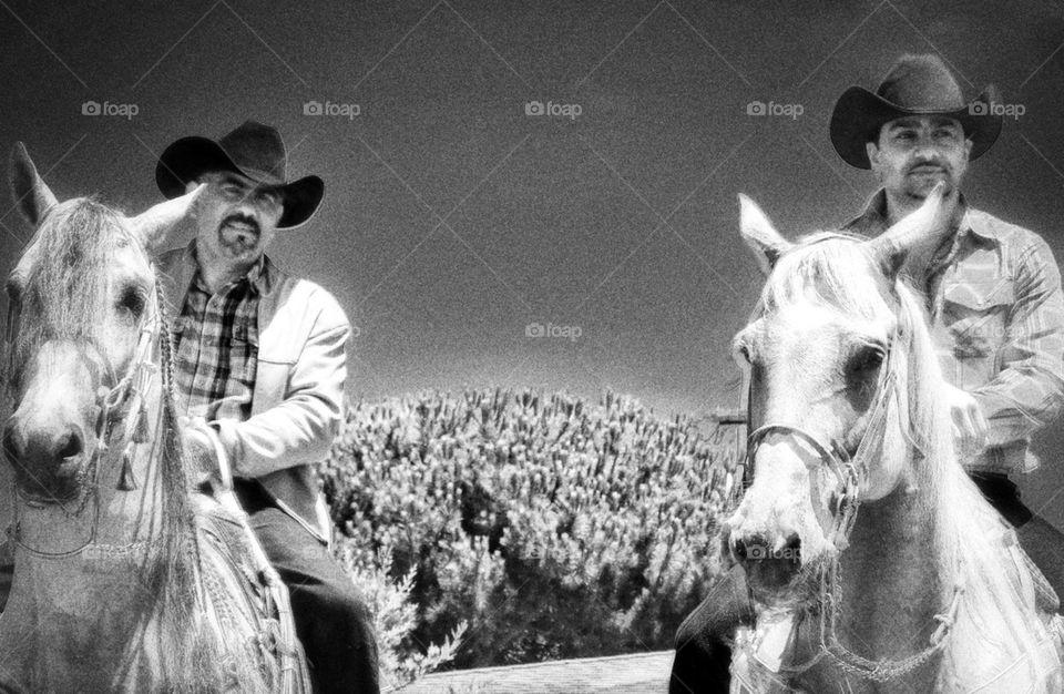 Handsome Latino Cowboys on Horseback