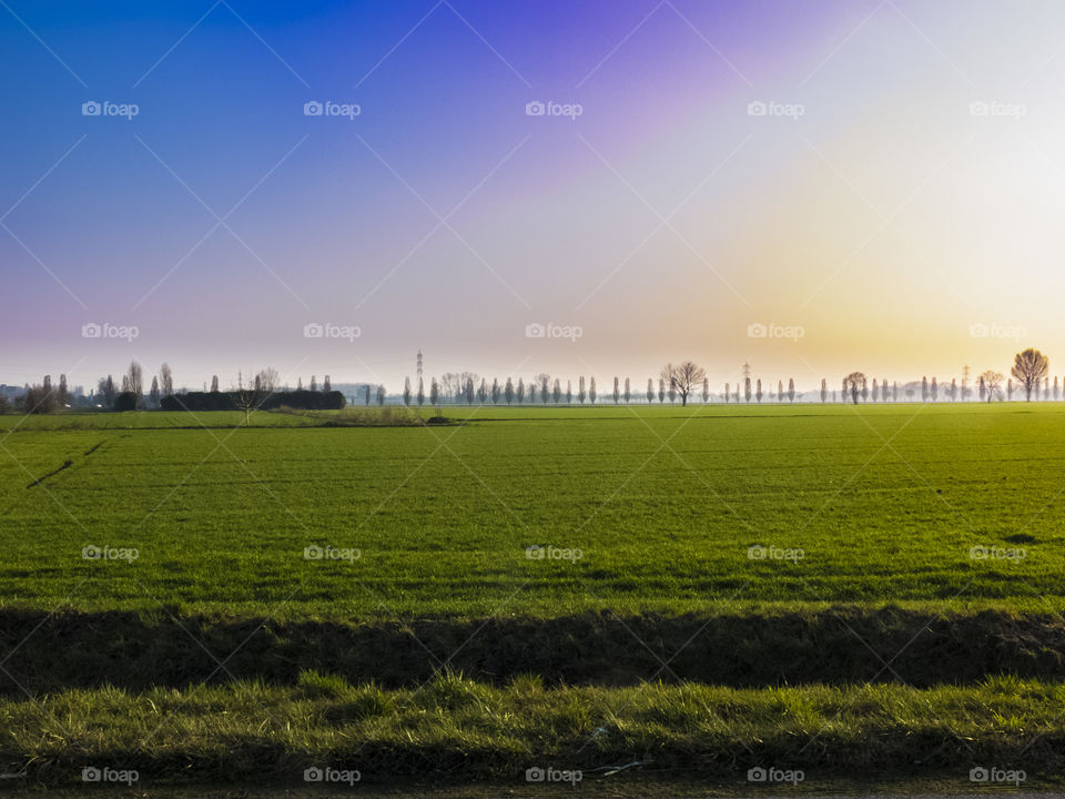 view of milan countyside on sunset. Green, gold, sky, grass, colorful, trees, blue, yellow, orange in Milano district, Lombardy, Italy.