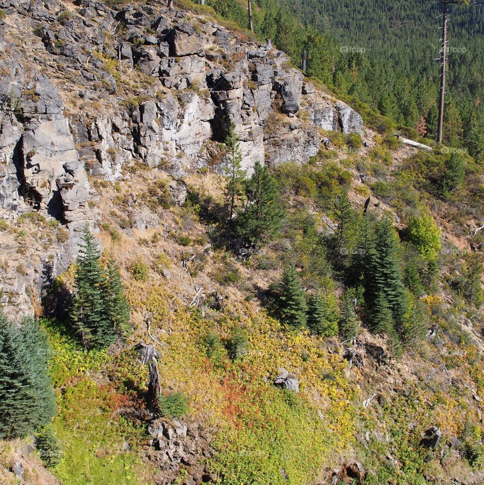 The beautiful shear rock cliffs on a tree covered hill on a sunny fall day in Central Oregon at Tumalo Falls.