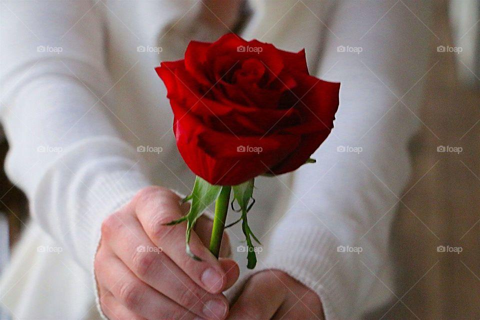 Women holding rose