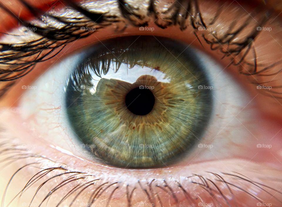 Extreme close-up of human eye