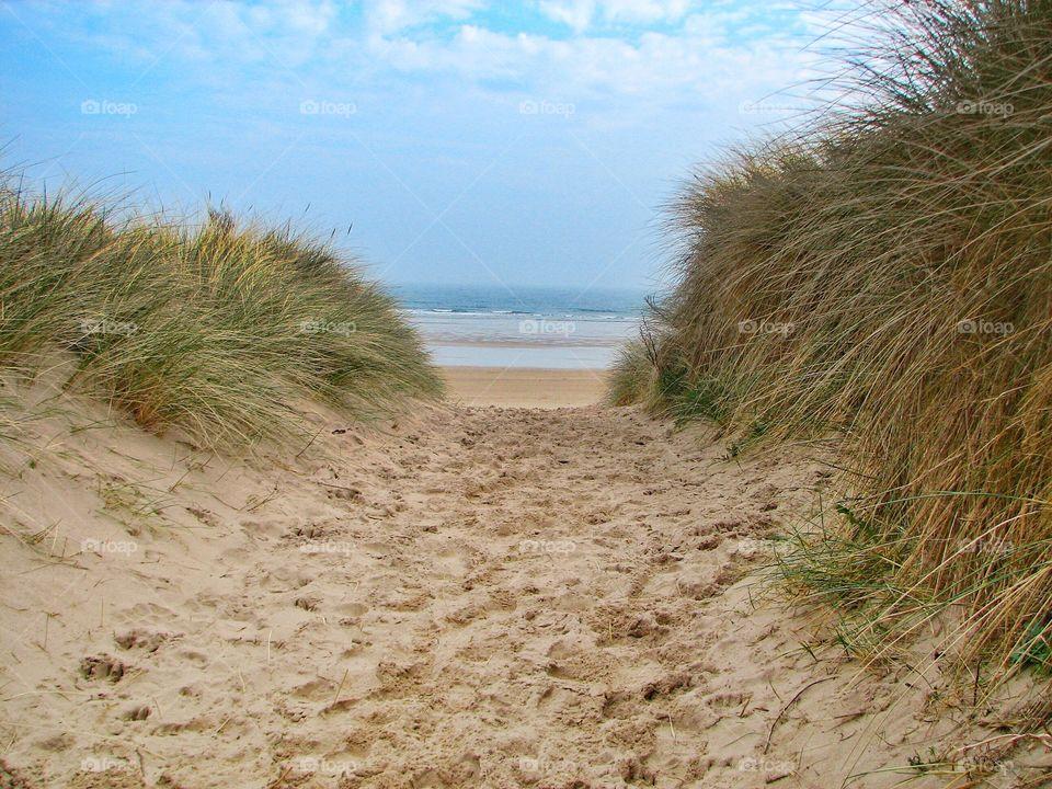Sandy Path To The Beach. A sandy path through sand dunes to a vast beach and Ocean.
