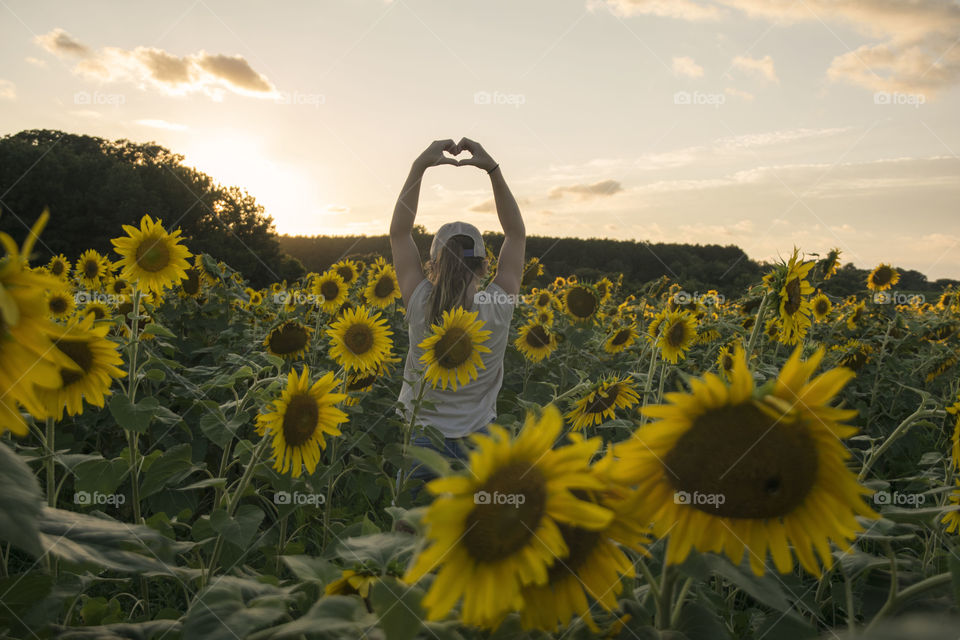 Girl in a Sunflower Field at Sunset