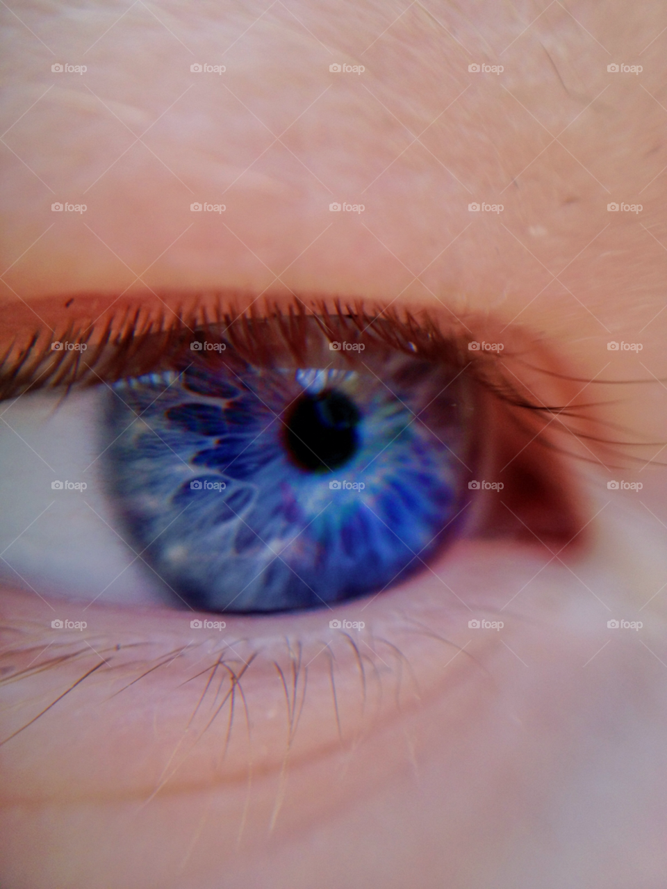 Extreme close-up of a human eye