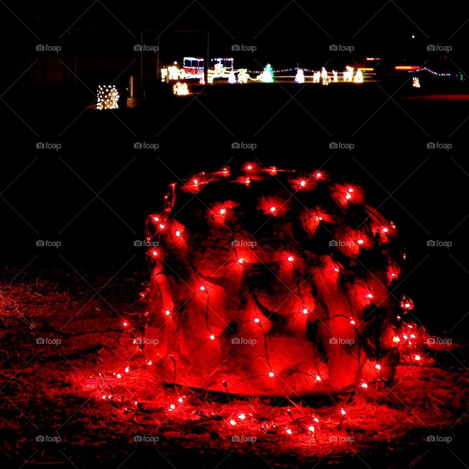 A decorative red glowing Christmas light web draped over a bush at night.
