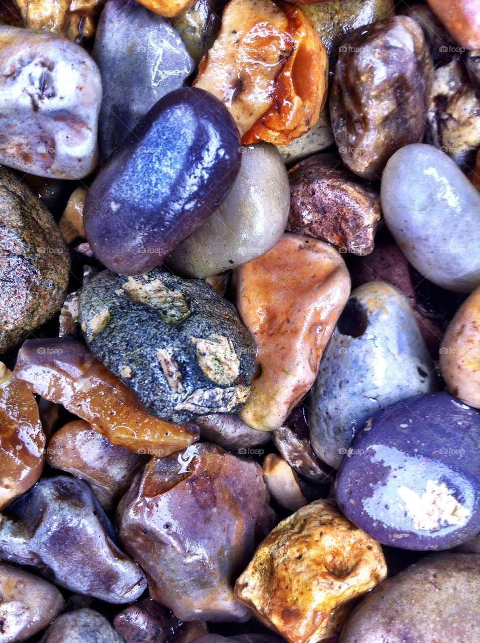 Wet stones at the beach.