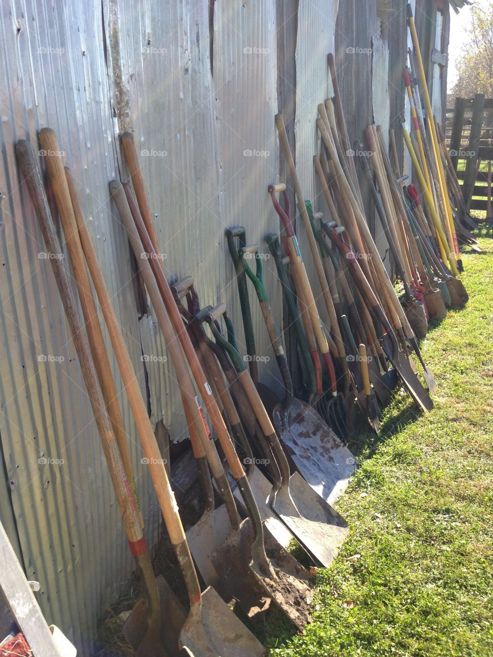 Shovels leaning on a barn