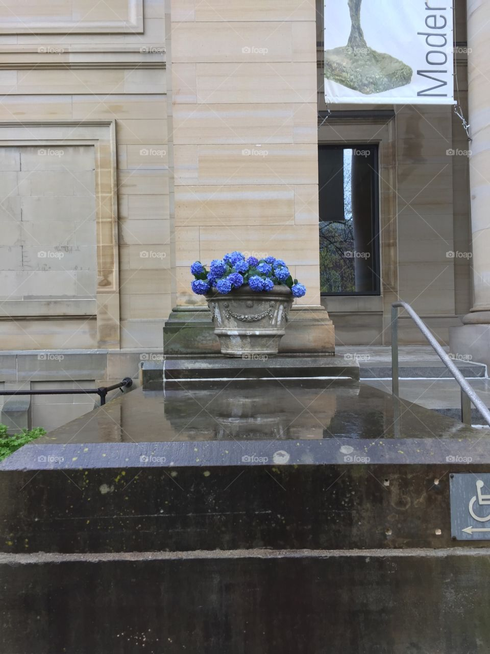 Flowers outside of UMMA in the Rain