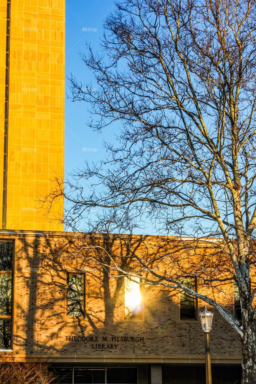 Sun Reflections on The Theodore M. Hesburgh Library