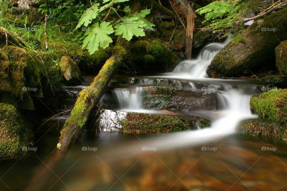 Lush Creek waterfall