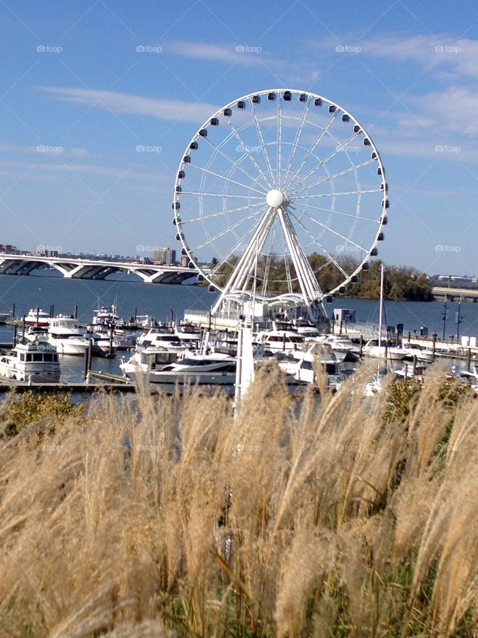 National harbor Ferris wheel . This was taken on the Potomac River at the national harbor in Maryland.  The view from the top includes Washington DC