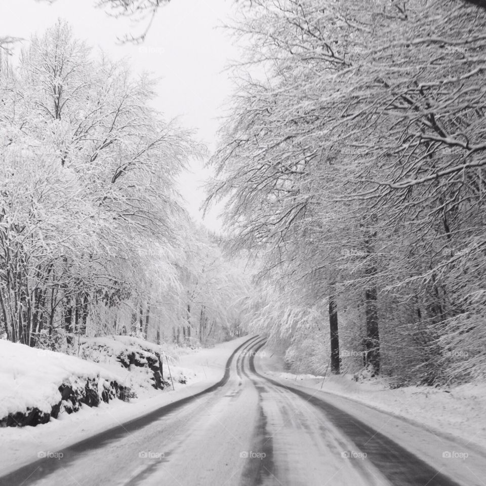 View of road in winter