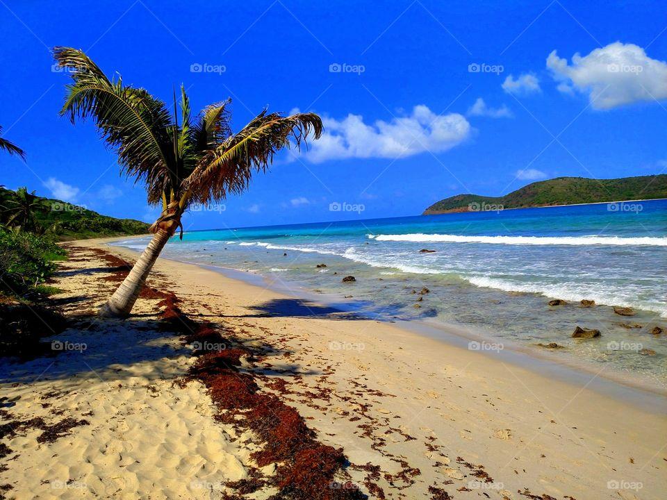 Beautiful beach at puerto rico